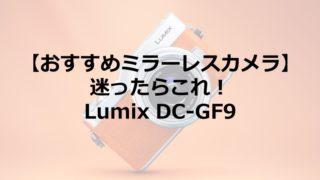 【おすすめミラーレスカメラ】迷ったらこれ!Lumix(ルミックス) DC-GF9 -Panasonic(パナソニック)素人でも簡単に格好良い写真が撮れる最高の1台